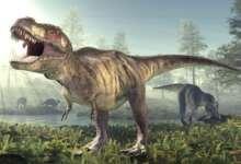 Dinosaur History and facts in hindi - gyanbaksa
