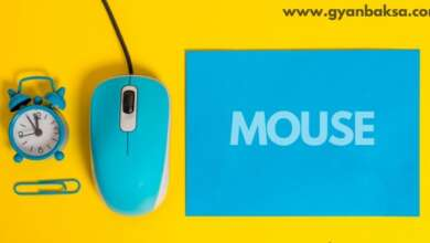 full form of mouse in hindi