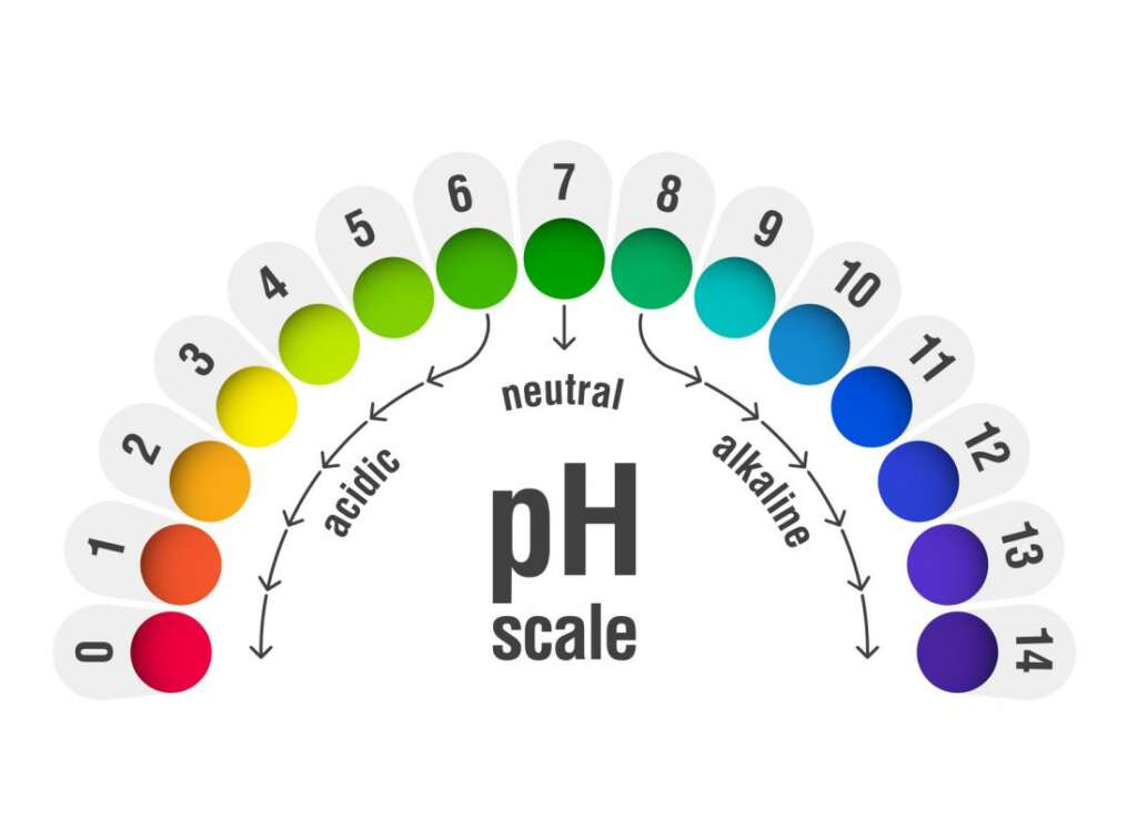 PH Full Form: Value of pH from 0to 14