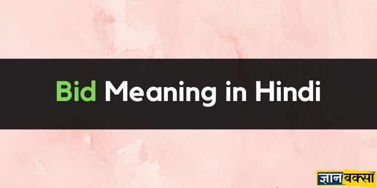 Meaning of Bid in Hindi