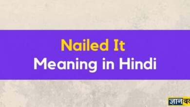 Meaning of Nailed it in Hindi