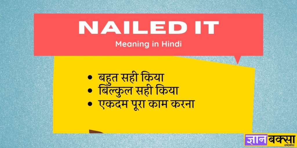 Nailed it Meaning in Hindi