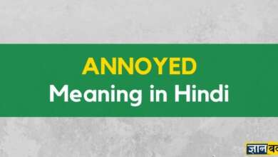 Meaning of Annoyed in Hindi