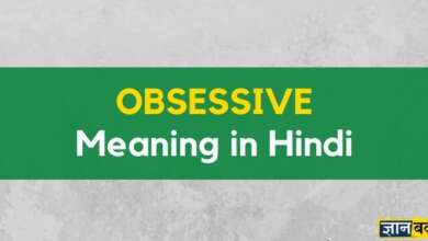 Meaning of Obsessive in Hindi