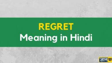 Meaning of Regret in Hindi
