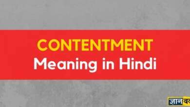 meaning of contentment in hindi