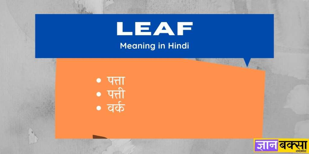 Leaf Meaning in Hindi