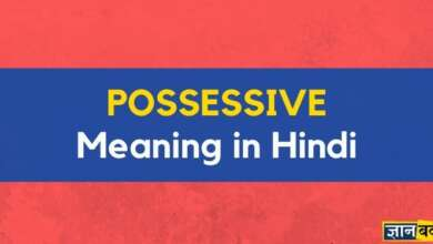 Meaning of Possessive in hindi